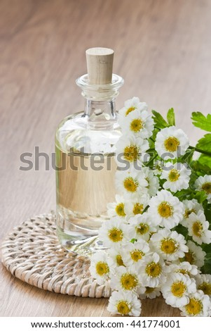 Essential aroma oil with chamomile flower for aromatherapy, spa, massage on wooden background/Essential aroma oil   - stock photo