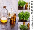 Essential aroma oil with peppermint  on wooden background. Spa collage. - stock photo