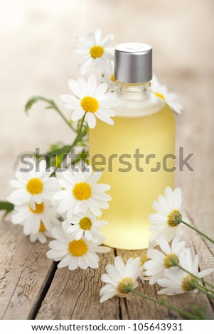 essential oil and camomile flowers - stock photo
