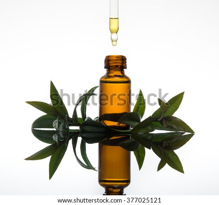 Essential oil with myrtle leaves (myrtus communis) with dropper on white background with reflection
