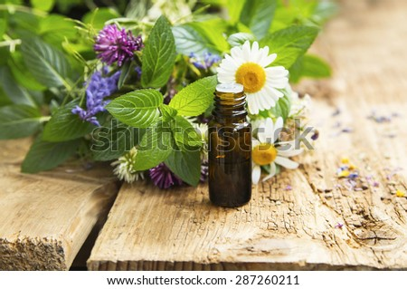 Essential Oil with Natural Herbs , Alternative Medicine - stock photo