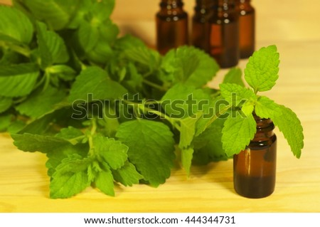 Essential oils in the glass bottles and mint leaves on the wooden background