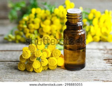 Essential tansy oil - stock photo