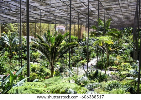 Merveilleux Estufa Fria Covered Garden In Lisbon, Portugal