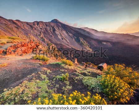 Etna Volcano in Sicily, Italy with colorful flowers on foreground