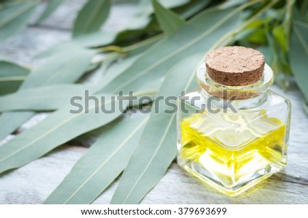 Eucalyptus leaves and essential oil on wooden cutting board.