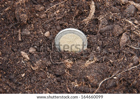 Euro coins embedded in the soil to grow. - stock photo