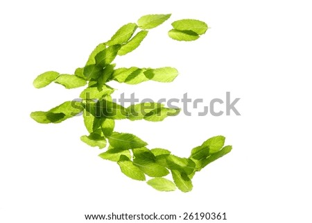 Euro currency symbol made of green basil mint leaves isolated on white studio background
