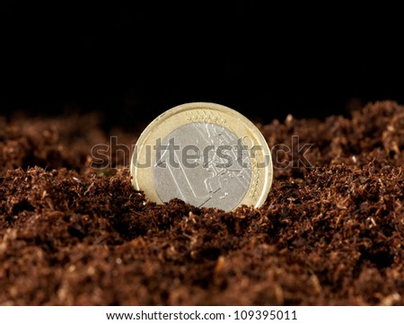 euro money growing in the ground - stock photo