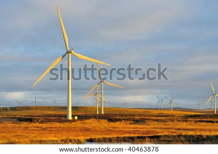Europe largest on shore windfarm at sunset, Eaglesham Moor, Scotland