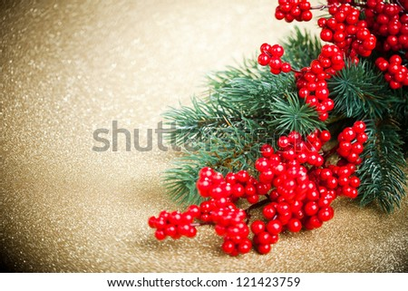 european holly and fir-tree on golden background, shallow DOF - stock photo