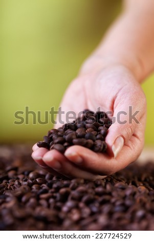 Evaluating the coffee crop - woman hands with a handful of roasted beans - stock photo