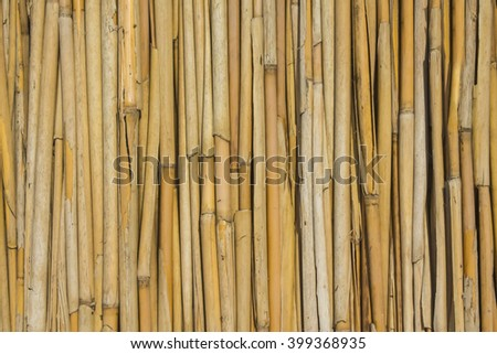 even folded dry reed - stock photo