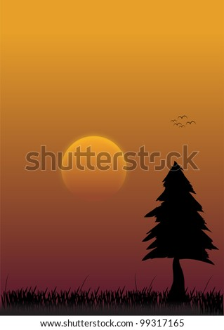 Evening - stock photo
