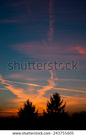 Evening aeroplane contrails sunset light on dark blue sky and tress silhouette, twilight in Poland, Europe, Nobody, vertical orientation. - stock photo