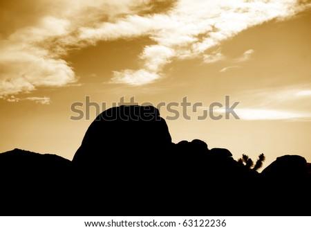 evening falls in Joshua Tree National Park - stock photo
