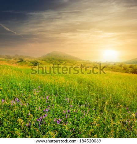 evening green hills - stock photo
