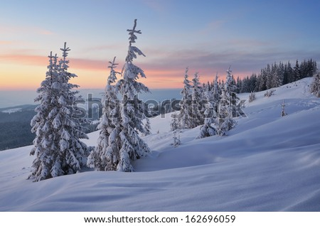 Evening Landscape with sunset sky in the winter in a mountain forest. Ukraine, Carpathian Mountains, the valley Kukul - stock photo