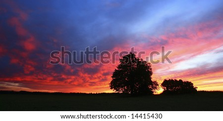 Evening light - stock photo