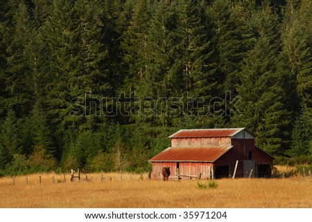 Evening light enhances the weathered wood grain on a rustic barn. Focus point is on the barn. - stock photo