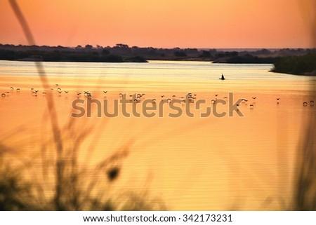 evening mood on the river Okavango, Namibia - stock photo