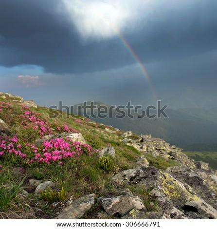 evening mountain plateau landscape with rainbow(Carpathian, Ukraine)  - stock photo