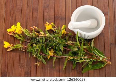 Evening primroses with mortar and pestle over wooden background - stock photo