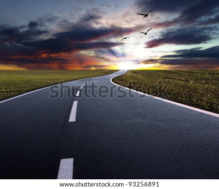 Evening road with flying birds - stock photo