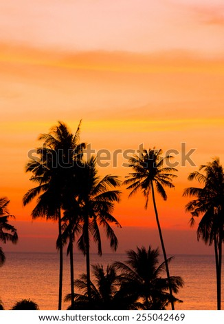 Evening Scene Palm Paradise  - stock photo
