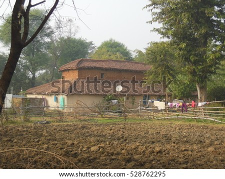 Evening time in a village farm