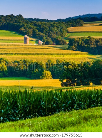 Evening view of rolling hills and farm fields in rural York County, Pennsylvania. - stock photo