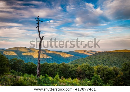 Evening view of the Appalachians from Thoroughfare Overlook, along Skyline Drive in Shenandoah National Park, Virginia. - stock photo