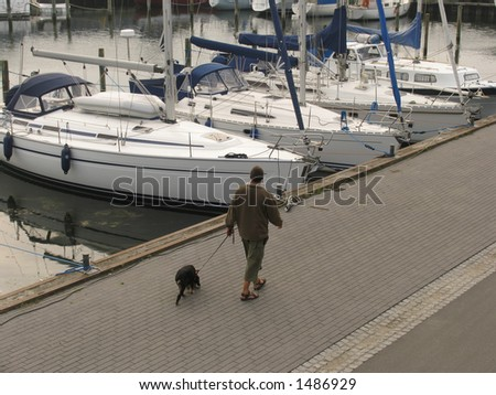 Evening walk with the dog along the waterfront - Nyborg - Denmark. - stock photo