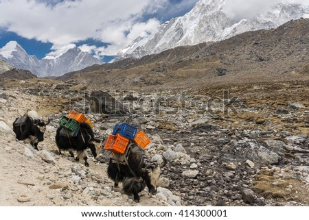 Everest base Camp trek - stock photo