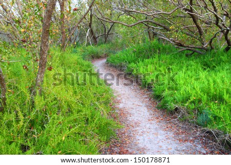 Everglades Coastal Prairie Trail - stock photo