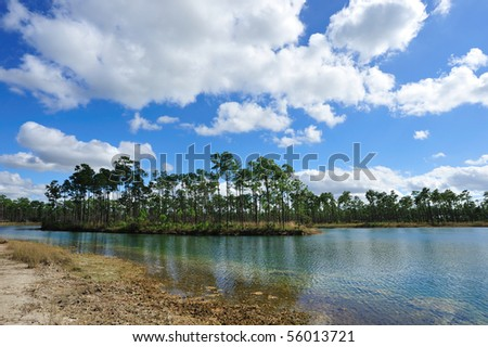 Everglades National Park - stock photo
