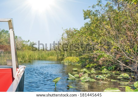 Everglades National Park from an Airboat - Miami Florida - stock photo