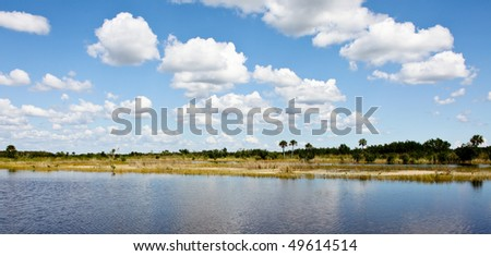 Everglades national park in florida - stock photo