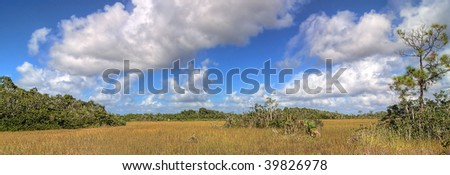 Everglades Panorama with clouds forming over the landscape - stock photo