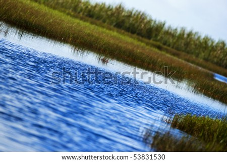 Everglades sawgrass and lake in the Florida Everglades - stock photo