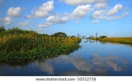 Everglades waterway scenic view. - stock photo