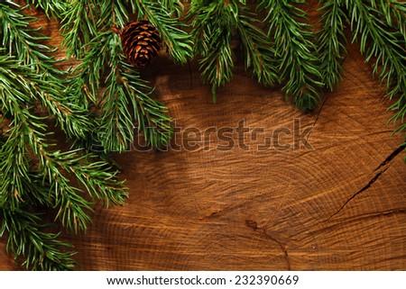 Evergreen tree background - stock photo