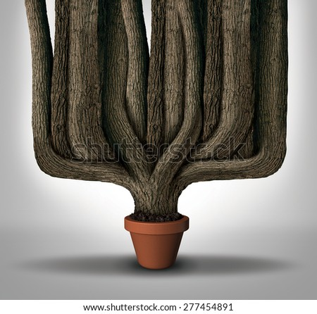 Exceed expectations business concept or maximum potential and outperform metaphor as a small flower pot with a giant expanding tree trunks growing with limited resources. - stock photo