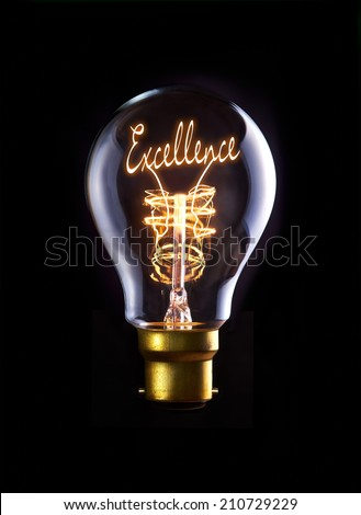 Excellence concept in a filament lightbulb. - stock photo