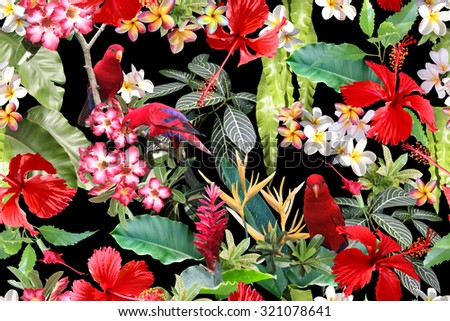 amazon rainforest plants collage. excellent tropical background on a black backdrop flowers hibiscus with birds branch amazon rainforest plants collage