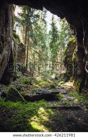 Exit to the forest from the dark rocky cave, vertical natural photo - stock photo