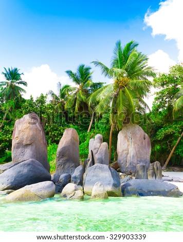 Exotic Beach Shore  - stock photo