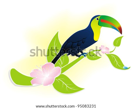 exotic bird Toucan sitting on a flowering branch