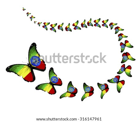 Exotic Ethiopia flag butterflies flying on white background as symbol freedom - stock photo