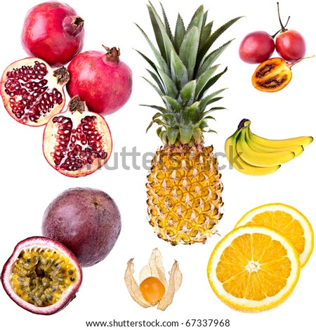 Exotic Fruits, completely isolated - stock photo